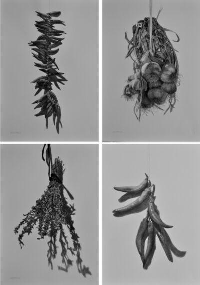 Samah Shihadi, 'Hanging Series  x 4 ', 2018