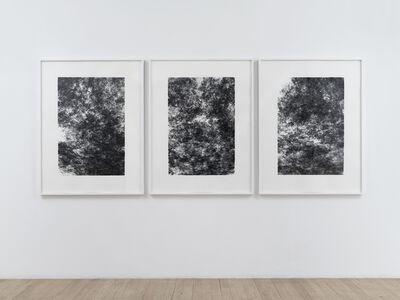 Tristan Perich, 'Three Machine Drawings (2018-02-09)', 2018
