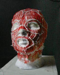 Alejandro Flores, 'Máscara con músculos', 2013