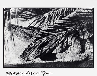Robert Rauschenberg, 'Untitled, Ft. Myers', 1979/91