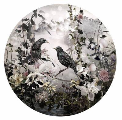 Ysabel Lemay, 'The Poet', 2015