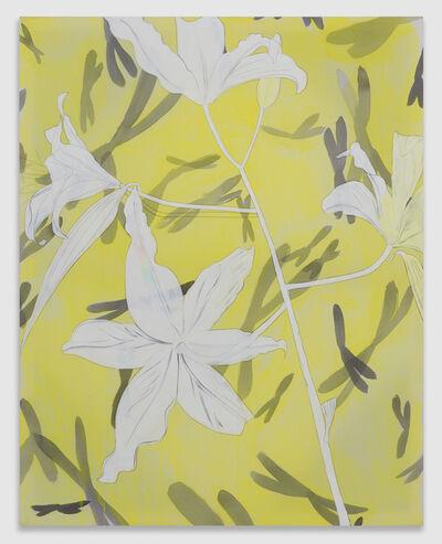 Paul Heyer, 'Spectrum (White Flowers)', 2014