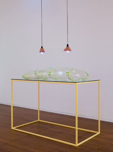 Mikala Dwyer, 'Earthlings', 2015