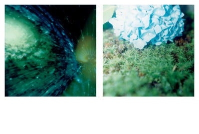 Rinko Kawauchi, 'Illuminance Limited-Edition Box Set'