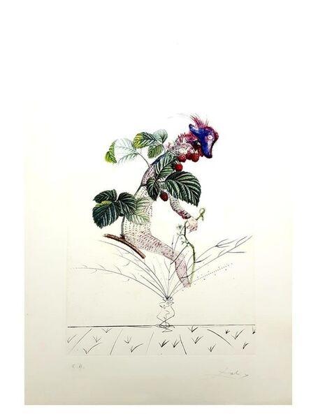 """Salvador Dalí, 'Original Lithograph """"Flordali - Raspberry"""" by Salvador Dali', 1969"""