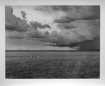 Luiz Carlos Felizardo, 'Sheep in the storm, Bagé, RS, Brazil, 1996', 1996