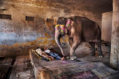 Steve McCurry, 'Elephant with Sleeping People', 2012