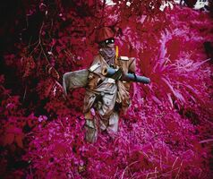 Richard Mosse, ''Better Than the Real Thing (Infra series)'', 2011