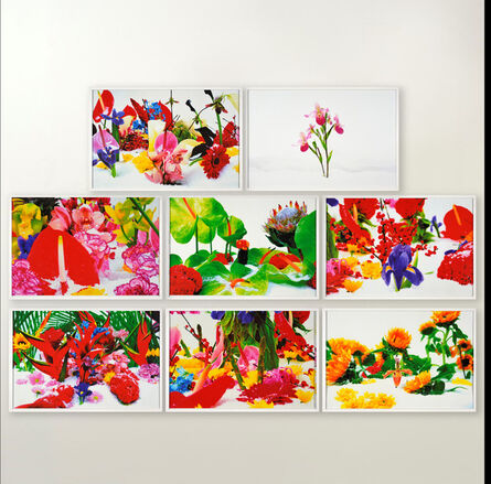 Marc Quinn, 'Winter Garden (Portfolio of 8)', 2004