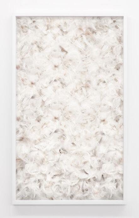 Aiden Morse, 'Feather Piece', 2014