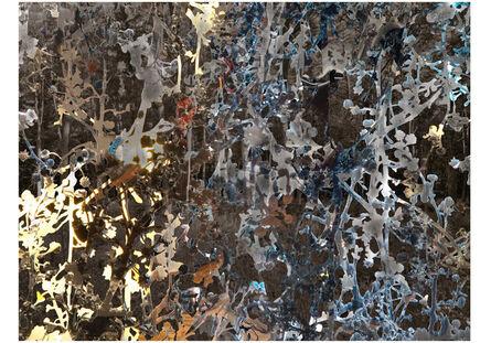 Aziz + Cucher, 'Scintilla_01', 2016