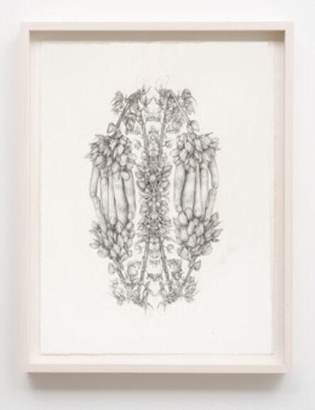 Aurel Schmidt, 'Untitled (Rorschach Flowers 1)', 2014