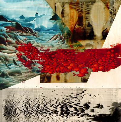 Pierre-Yves Girard, 'Partition des niches', 2019