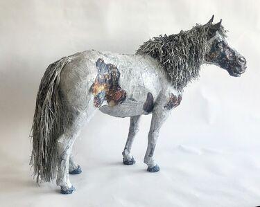 Will Kurtz, 'Einstein, World's Smallest Stallion', 2014