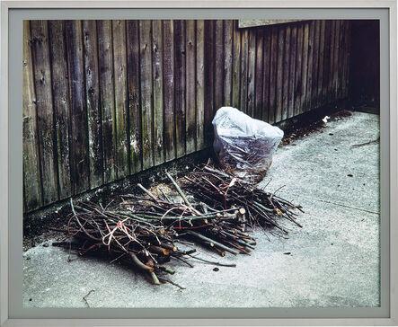 Jeff Wall, 'Cuttings', 2001