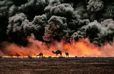 Steve McCurry, 'Struggling camels silhouetted against the oil-fire, al-Ahmadi oil field, Kuwait', 1991