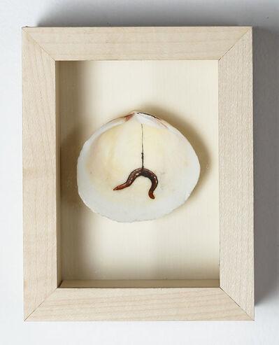 Léopold Rabus, 'Sans Titre (ver sur hameçon dans coquillage encadré)', 2011