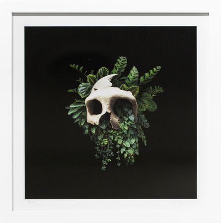 Nick Pedersen, 'Darkness', 2019