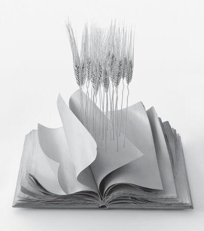 Lorenzo Perrone, 'Terre Madre', 2014