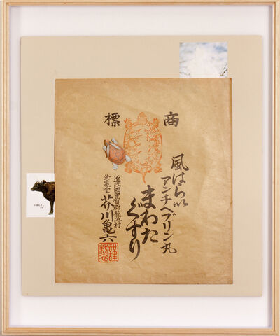 Saya Irie, 'Tokakukimou (rabbit's horn turtle's hair)', 2017