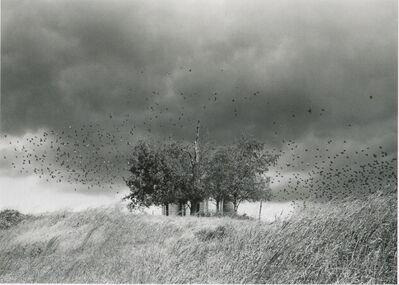 Mark Steinmetz, 'Jefferson City, Tennessee', 1991