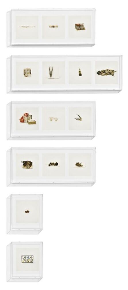 Taryn Simon, 'Animal Corpses (Prohibited), Animal Parts (Prohibited), Animal Skeletons (Prohibited), Animal Specimens (Prohibited), Butterflies (Prohibited), Snails (Prohibited), ', 2010