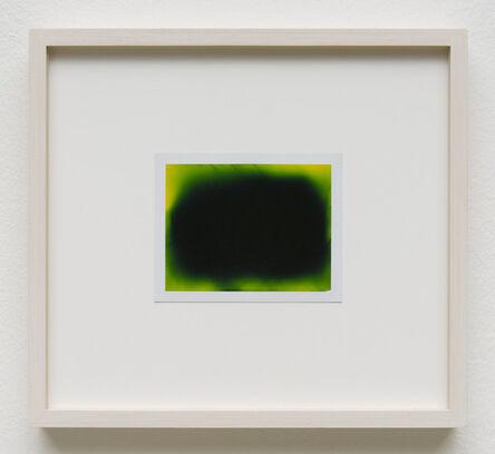 Peter Miller, 'Photuris #9', 2013
