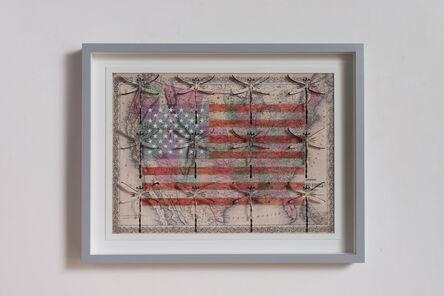 Pietro Ruffo, 'USA freedom', 2015