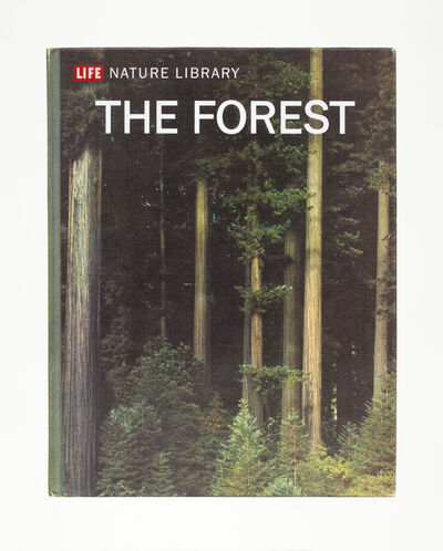 Mungo Thomson, 'The Forest', 2015