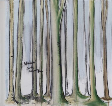Fabrice Hyber, 'Shadow', 2013