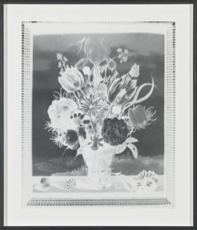 Vera Lutter, 'Ambrosius Bosschaert, Bouquet of Flowers on a Ledge, 1619: March 21, 2017', 2017