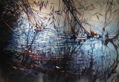 David T. Kessler, 'Highwater Snag'