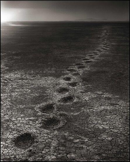 Nick Brandt, 'Elephant Footprints, Amboseli 2012', 2012