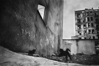 Yusuf Sevinçli, 'Untitled 013', 2007