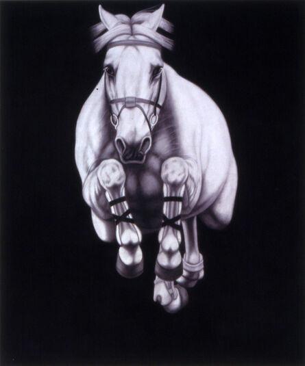Joseph Piccillo, '#12-2009', 2009