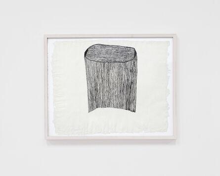 Sheroanawë Hakihiiwë, 'Titiri miki (Cabellos del espíritu de la noche)', 2015
