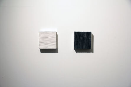 Masayuki Tsubota, 'the wall of self_gssnhus', 2015