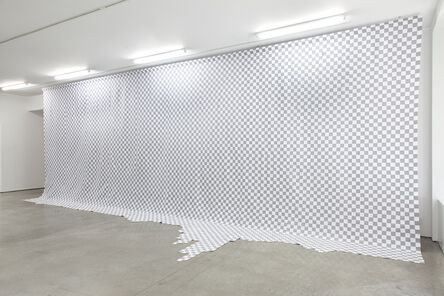 Stephanie Syjuco, 'Total Transparency (Background Layer Bleed)', 2017