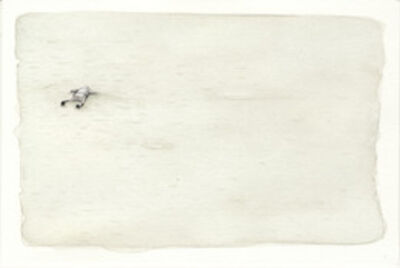 Samantha Scherer, 'Floodplains (xvii)', 2008