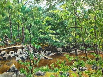Richard Fitzhugh, 'Rocks and Creek in Rock Creek Park'