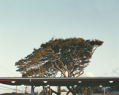 LM Chabot, 'Hawaii 6', ca. 2015