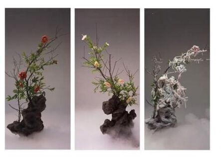 Wang Qingsong, 'Red Peony, White Peony and Frosted Peony', 2003