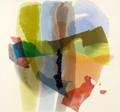 Lynn McCarty, 'Changing Perception', 2017