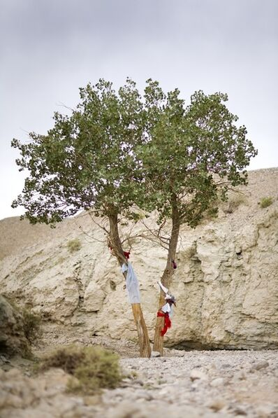 Lisa Ross, 'Tree with Healing Power', 2009