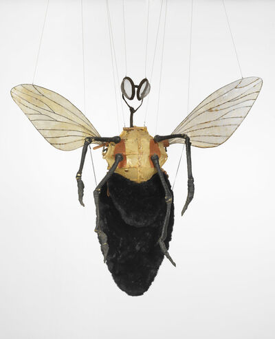 Jan Fabre, 'A Meeting Vstrecha, Fly Costume', 1997