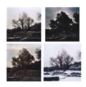 Hai Bo, 'Four Seasons: Winter, Spring, Summer, Autumn', 2000-2002