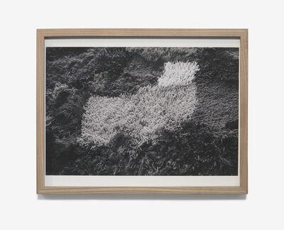 Iris Eichenberg, '#1', 2017