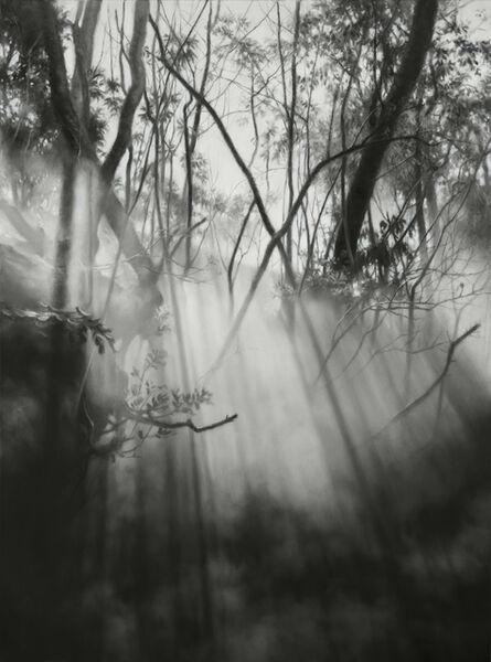 Jaco van Schalkwyk, 'Arcadia I', 2016