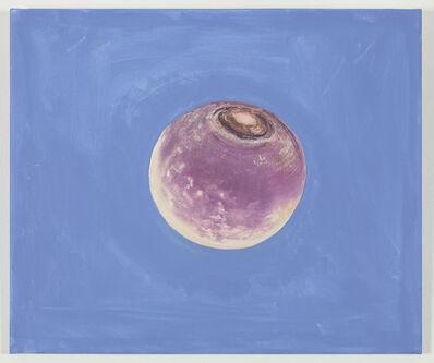 Jef Geys, 'L'Origine du ciel (Turnip)', 2016