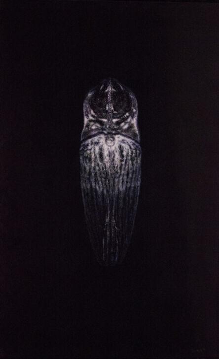 Amber Sena, 'White Noise', 2012